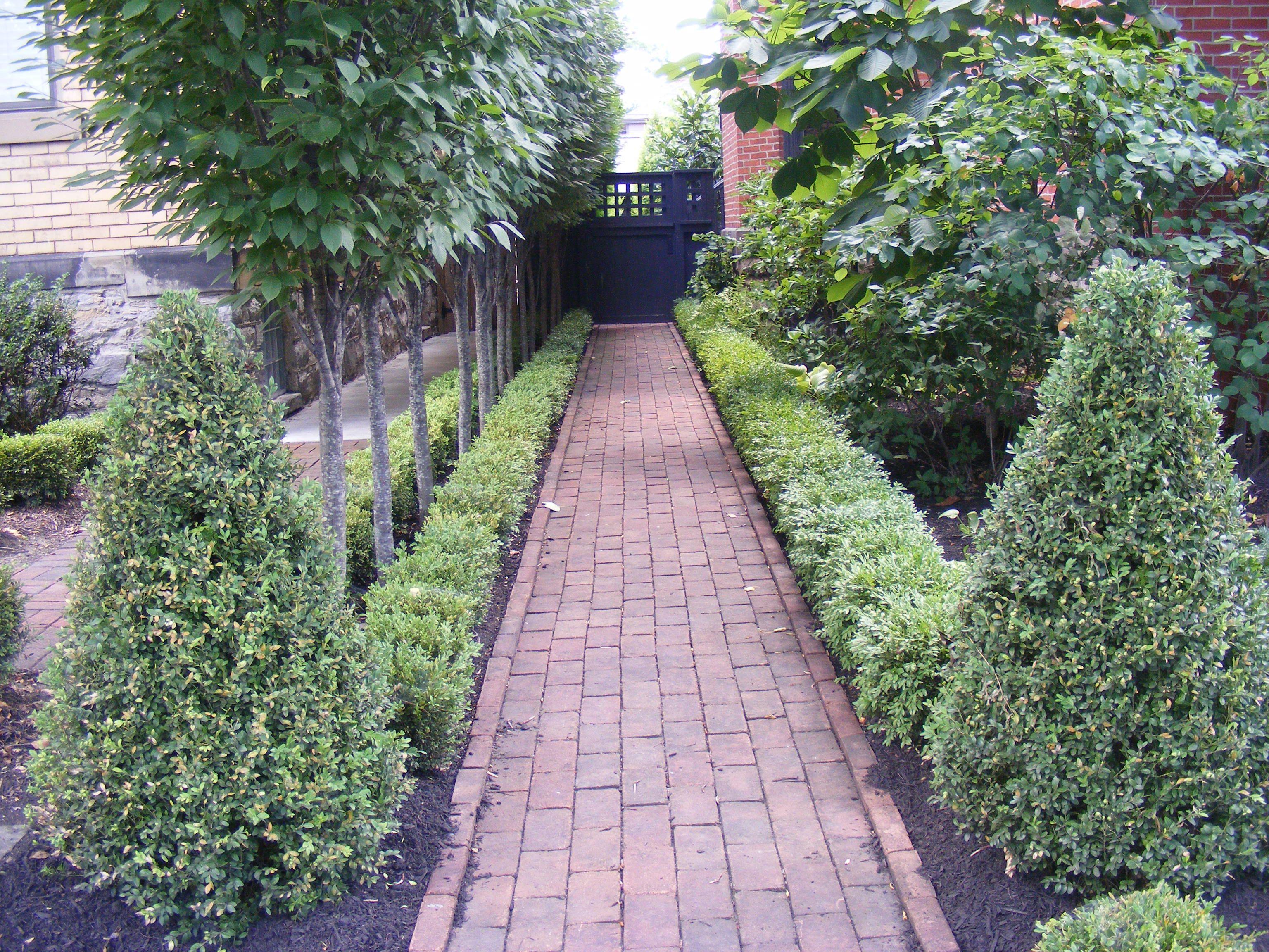 Side Garden Of Home In German Village Columbus Garden