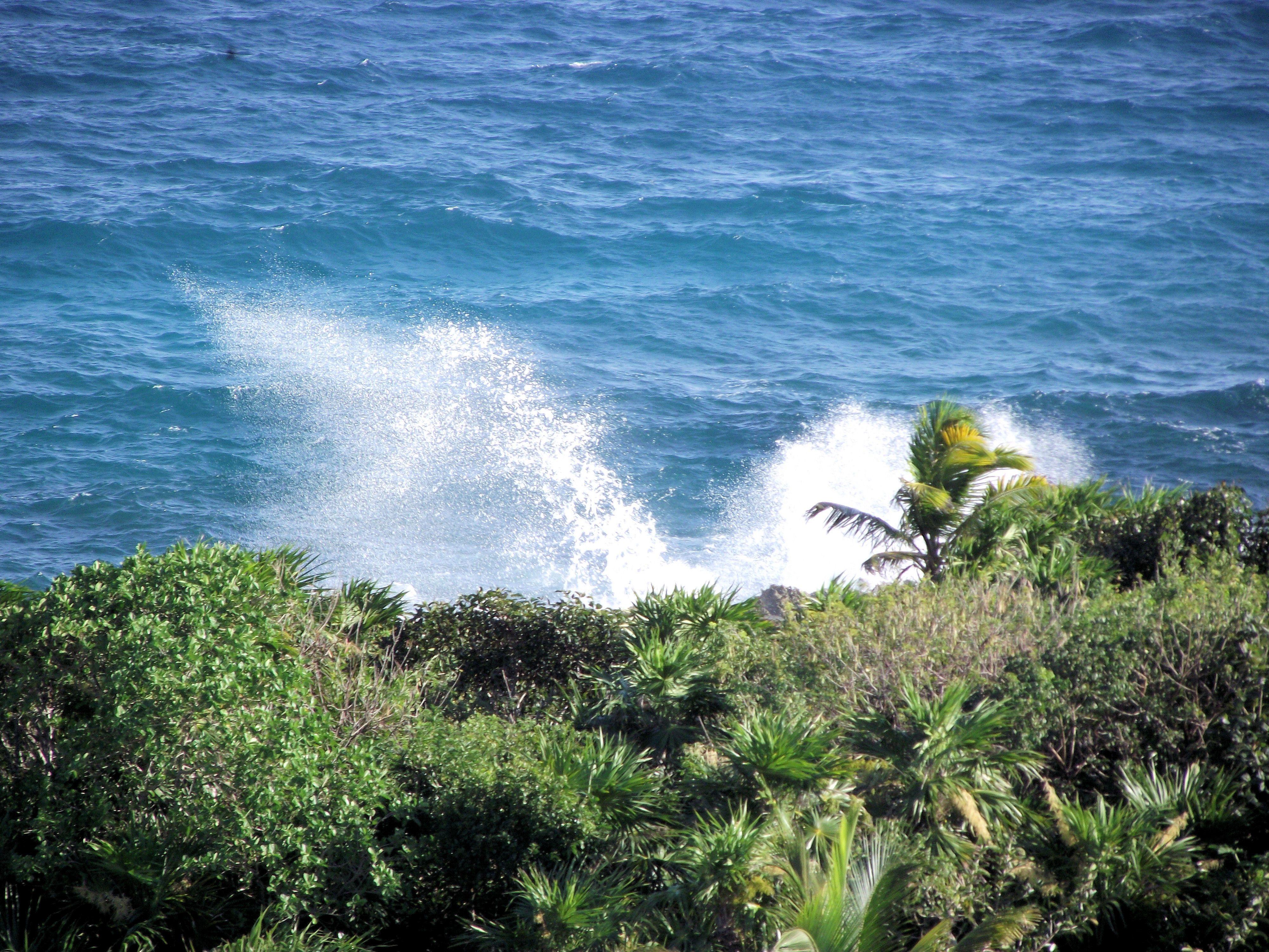 Wave crashing off Mexican shores near Cancun.