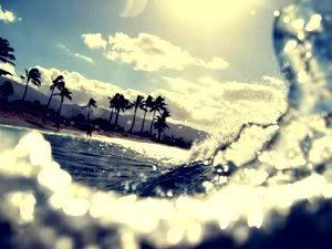summer beach tumblr photography. beach and love photography tumblr graphics for summer b