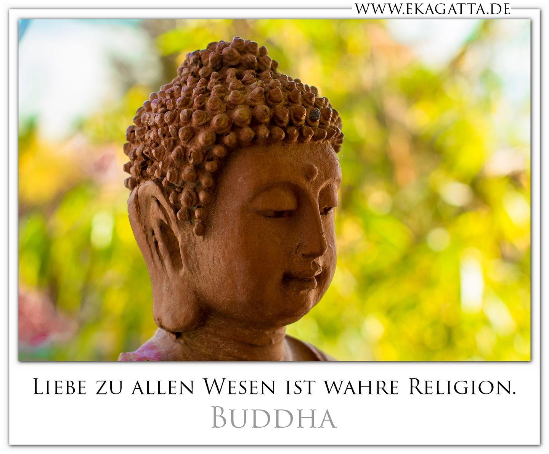 liebe zu allen wesen ist wahre religion buddha zitate buddhismus. Black Bedroom Furniture Sets. Home Design Ideas