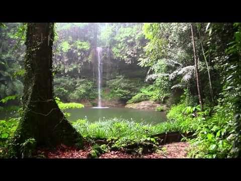 Música para Dormir - Ondas Delta - Conciliar el Sueño Profundo - 8 Horas de Música Relajante Dormir - YouTube