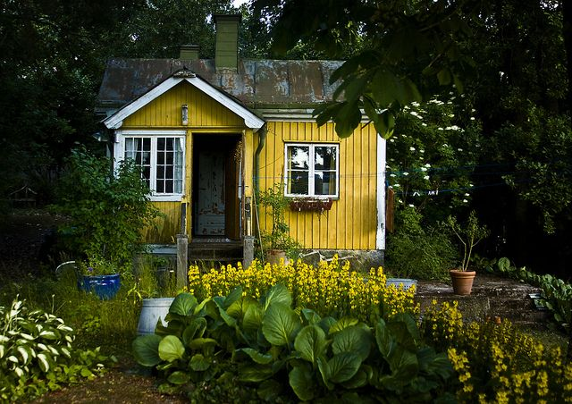 Little House Yellow Cottage Tiny Cottage Forest Cottage