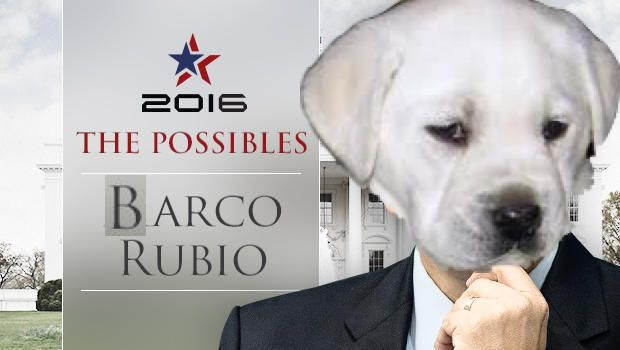 Barco Rubio