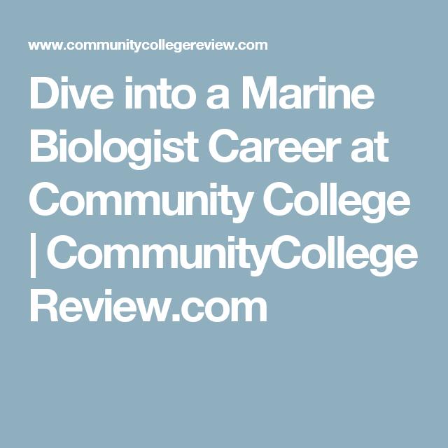 Best Marine Biologist Job Description Gallery - Best Resume ...