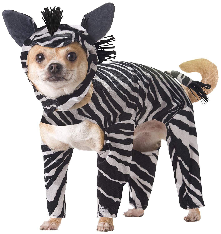 Batman Walking Dog Costume Dog Walking Dog Costumes Dog Halloween