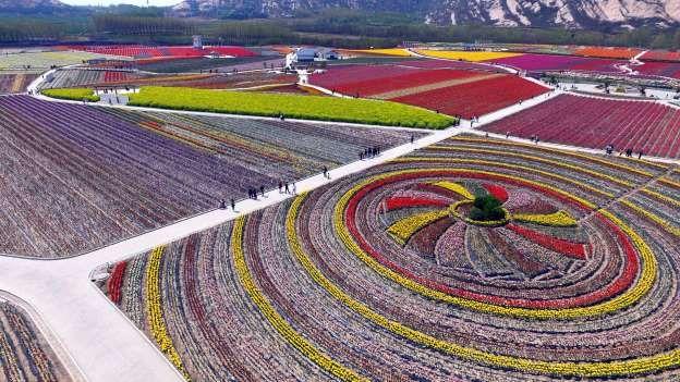 Zhumadian, Henan - VCG via Getty Images