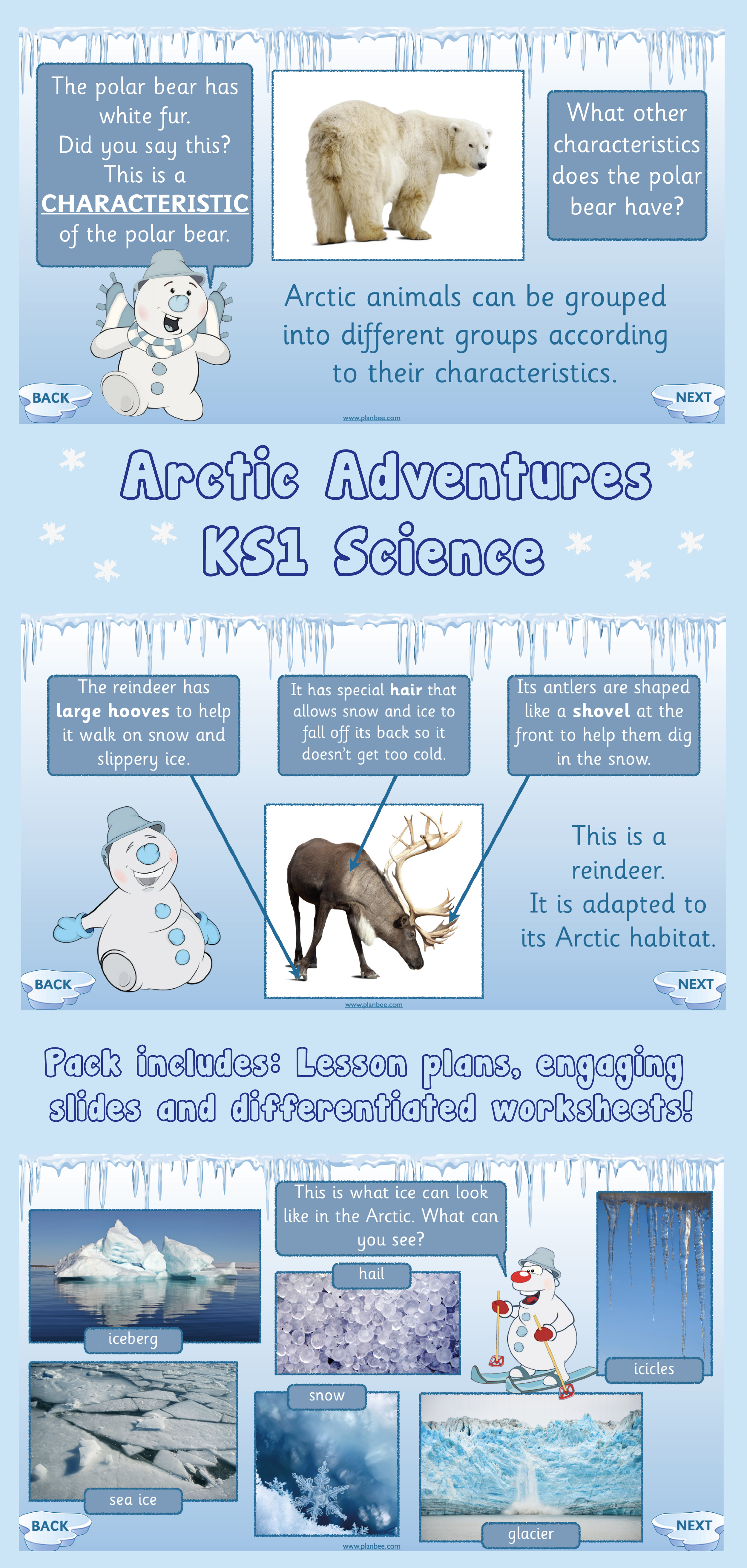 Arctic Adventures All SCIENCE Lessons in Topic Science