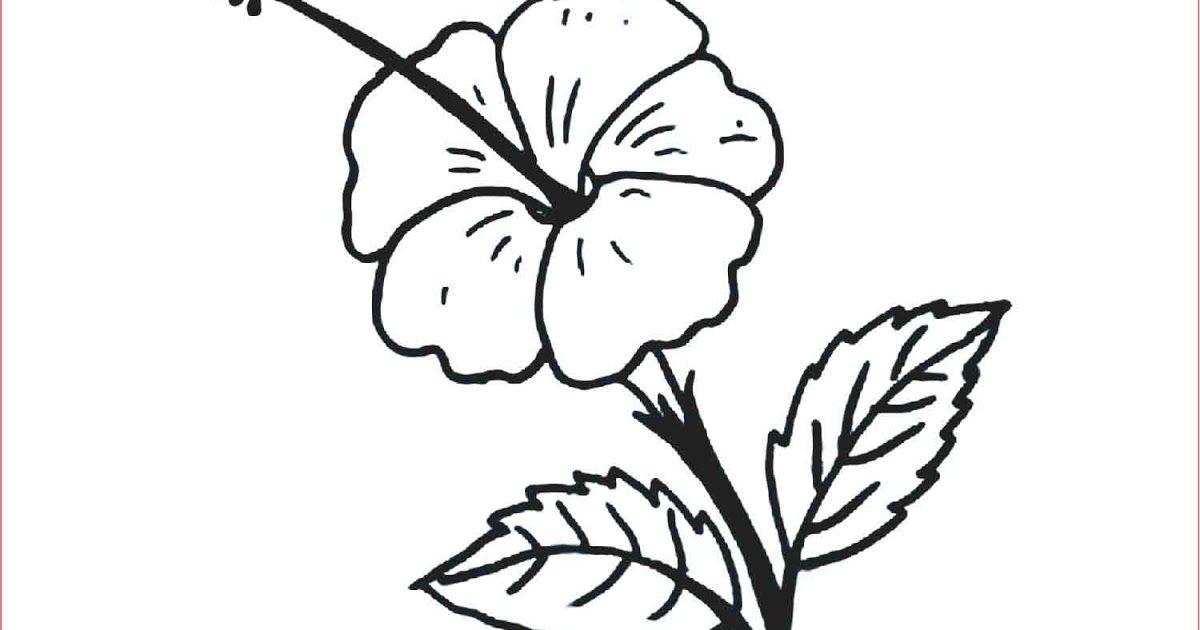 Terbaru 27 Gambar Bunga Mawar Seni Budaya 30 Gambar Sketsa Bunga Mudah Bunga Matahari Mawar Tulip Makna Lukisan Bunga Mawar Seni Ru Di 2020 Bunga Teratai Bunga Seni