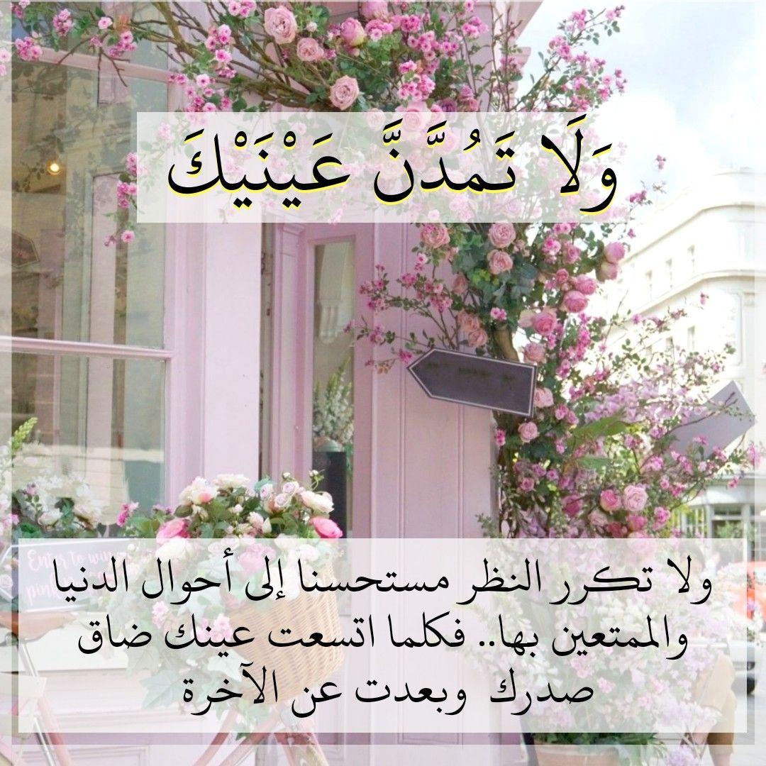 قرآن كريم آية ولا تمدن عينيك Islam Quran Wise Quotes Quran