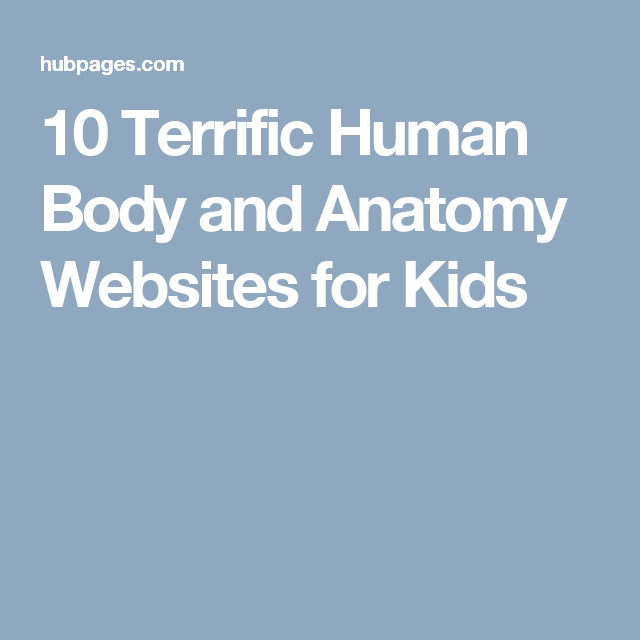 10 Terrific Human Body And Anatomy Websites For Kids Body
