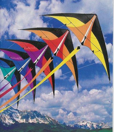 Kites are flying #kites