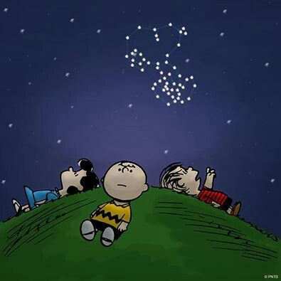 Image result for charlie brown looking up at sky