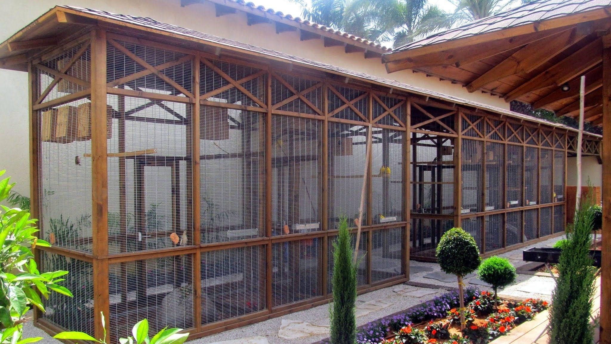Garden aviary construction stages | Aviaries | Pinterest | Bird ...