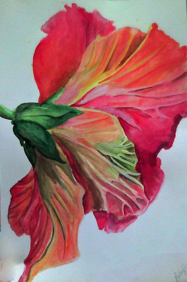 Watercolor hibiscus by viarae on deviantart art painting watercolor hibiscus by viarae on deviantart izmirmasajfo