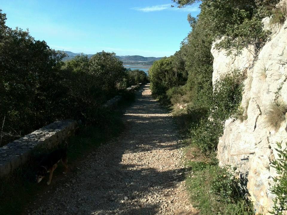 Caminando por el monte. #turismosantoña #santoñateespera