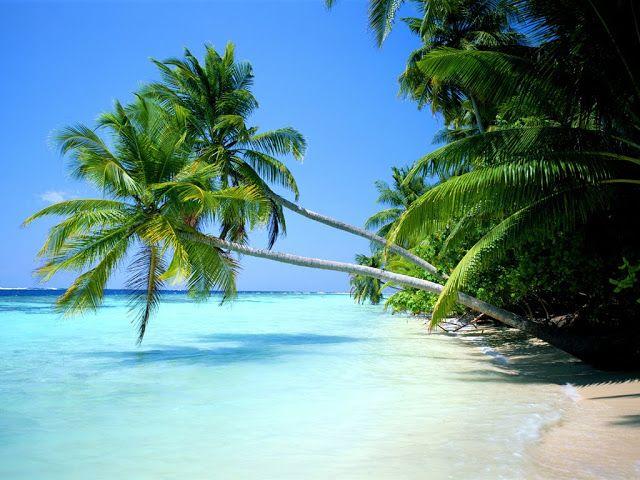 Foto Pantai Pantai Terindah Di Dunia Pemandangan Pantai Di Pantai