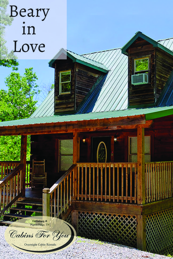 forge first view cabins with cabin living rentals room gatlinburg large pigeon tenn in