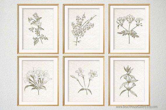 Jasmine Flower Watercolor Printable Art Floral Large Bedroom Wall Art Downloadable Prints Jasmine Flower Print White flowers print