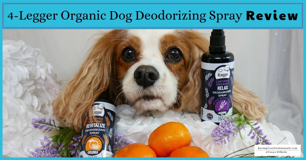 Organic Dog Perfume Dog perfume, Organic dog