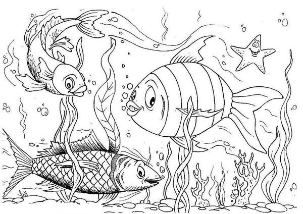 aquarium coloring pages - Google Search | Color: Fish and Such ...