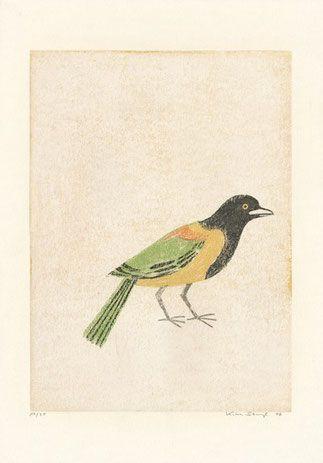 Katrin Stangl Brasilien II, 2006 Acht farbige Holzschnitte, gedruckt von der verlorenen Form 50 cm x 35 cm