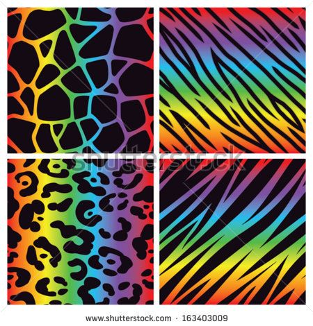 animal print google search - Animal Pictures Print Color