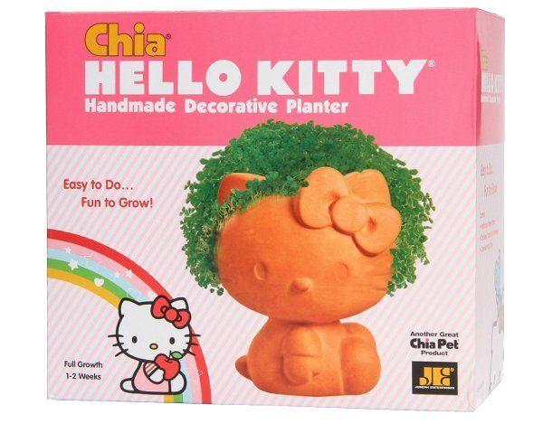 Planta Decorativa Hello Kitty