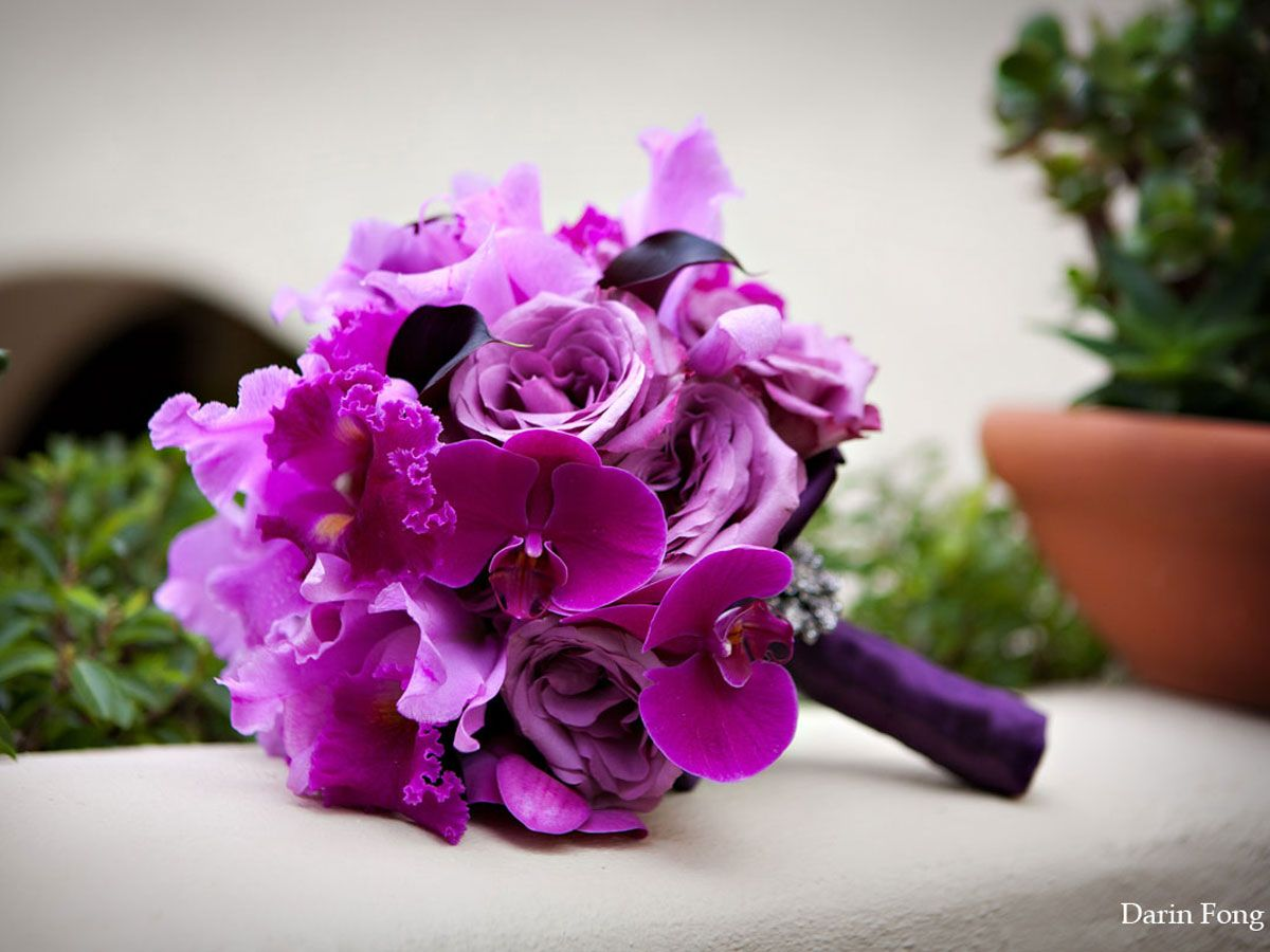 Purple favorite color a second chance at love pinterest purple bouquets with orchids biocorpaavc