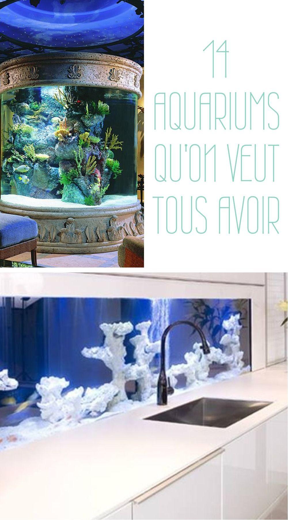 Avoir Un Aquarium 14 idées pour mettre en valeur votre aquarium dans votre intérieur