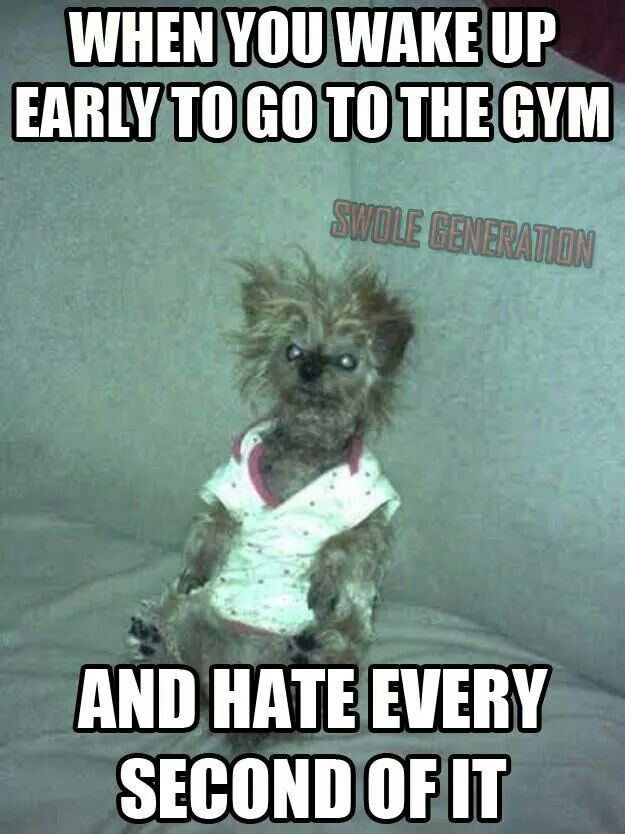 I Sit Up For 10 Minutes Before Crawling Out Of Bed All Done W Lights Off Love Working Out In The Am But It S A B H Ge Workout Humor Gym Humor Workout