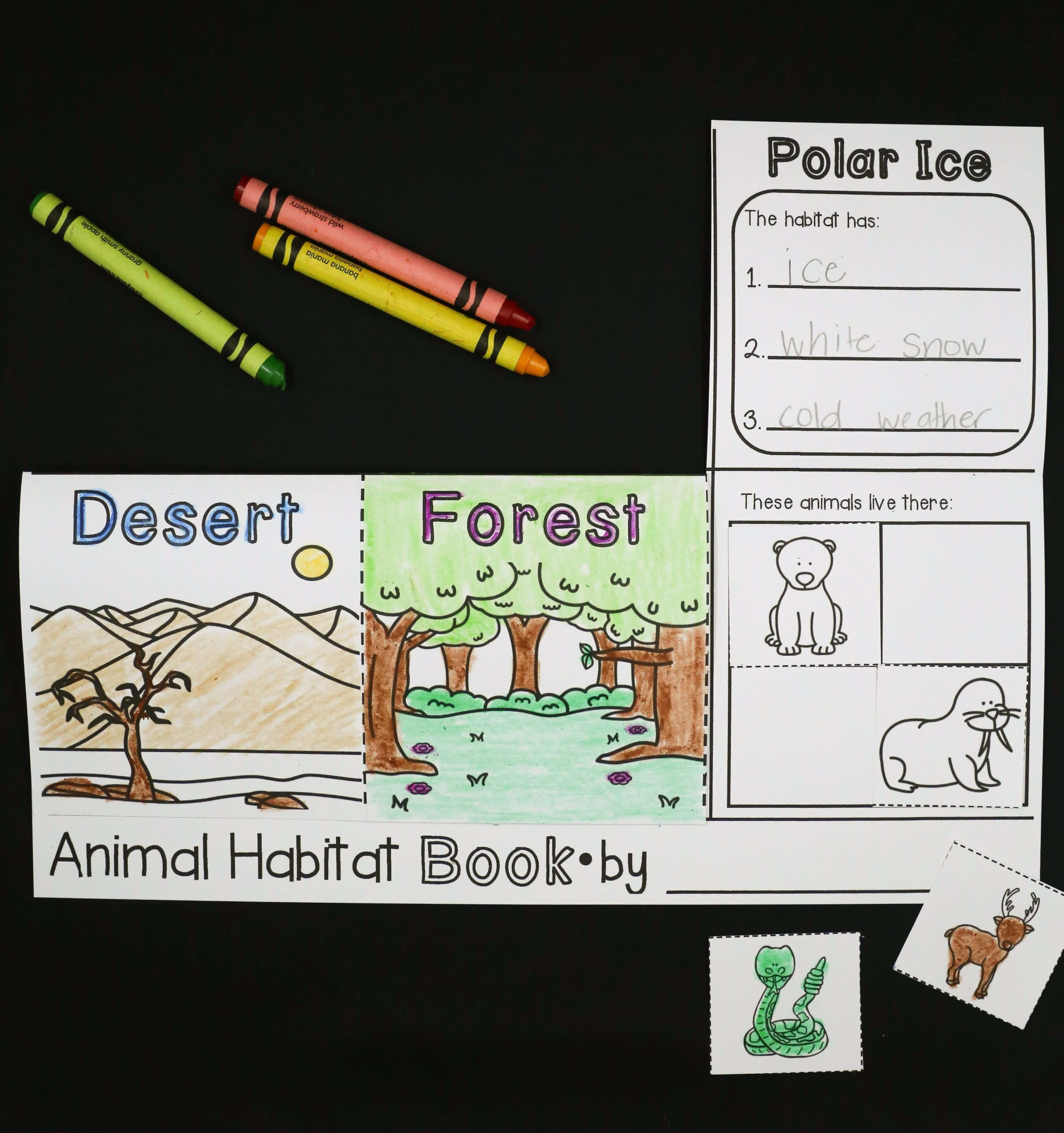 Animal Activities For Kids Playdough To Plato Animal Habitats Kindergarten Animal Habitats Preschool Kindergarten Projects [ 3881 x 3644 Pixel ]