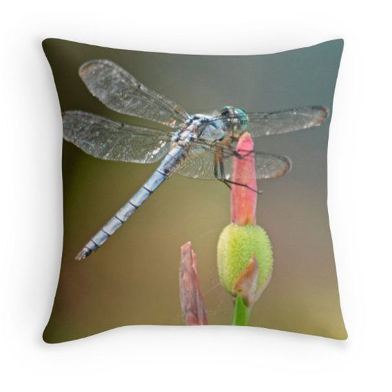 Dragonfly Pillow Cover Dragonflies Pillows And Joann Fabrics Awesome Joann Fabrics Pillow Covers