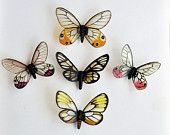 Butterfly Magnets Glasswings Wholesale Lot of  5 Refrigerator Magnets Insects