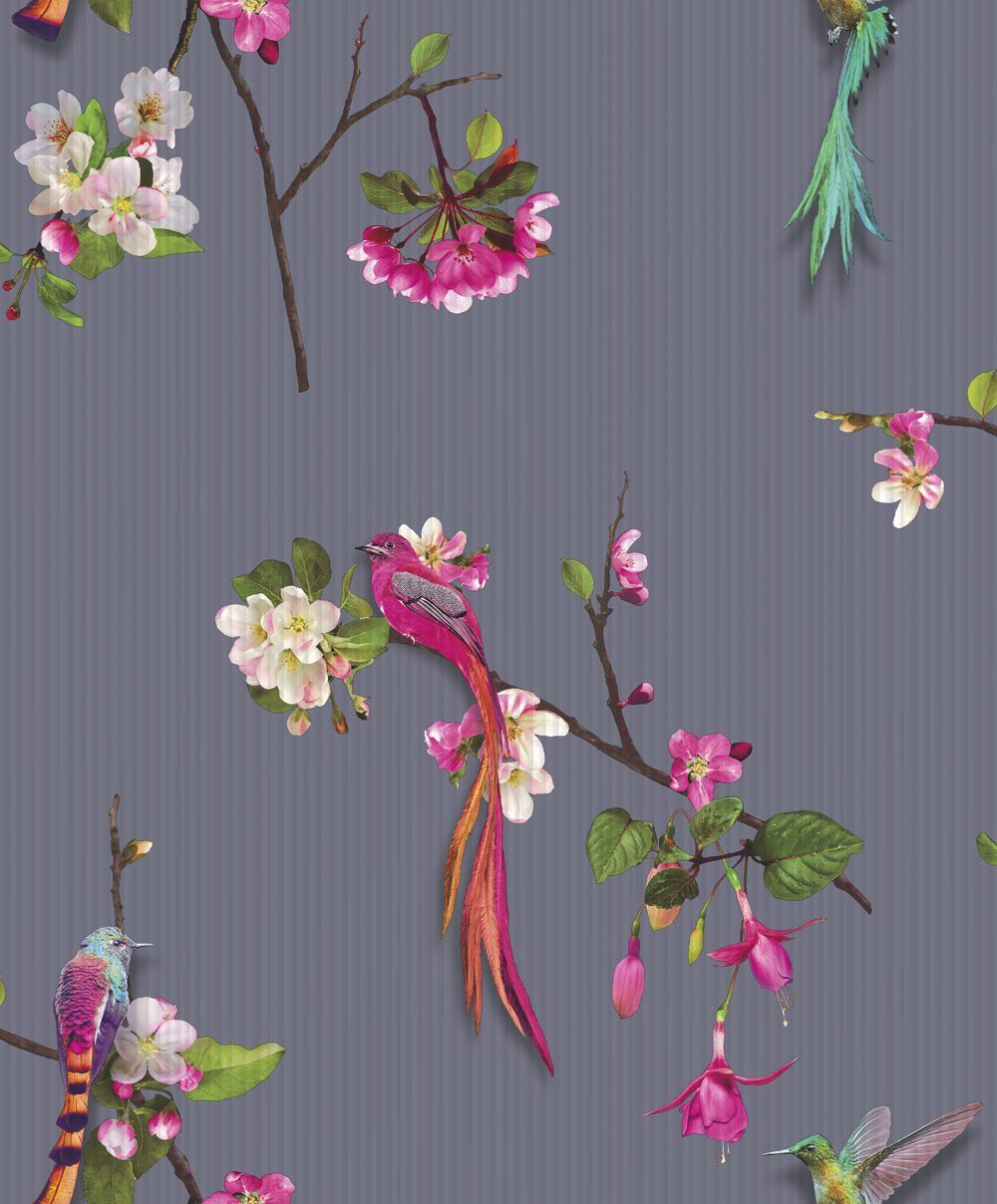 Kotori By Arthouse Purple Wallpaper 293105 Purple