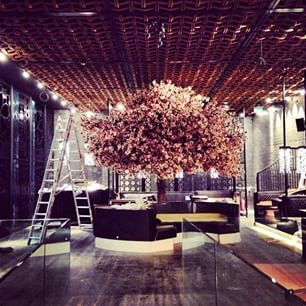 Tattu Manchester With Real Dried Cherry Blossom Tree Japanese Hotel Bar Design Tea House