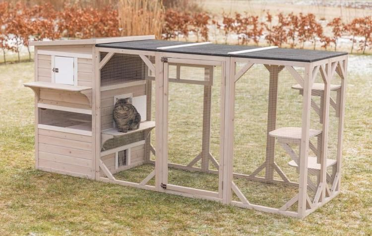 Your Cat Can Now Have Their Own Luxury Apartment Cat Playground Outdoor Cat Playground Dog House Diy