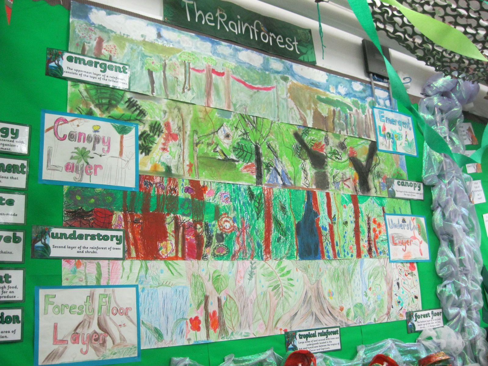 Year 3 Rainforest Layers Collage Ks2