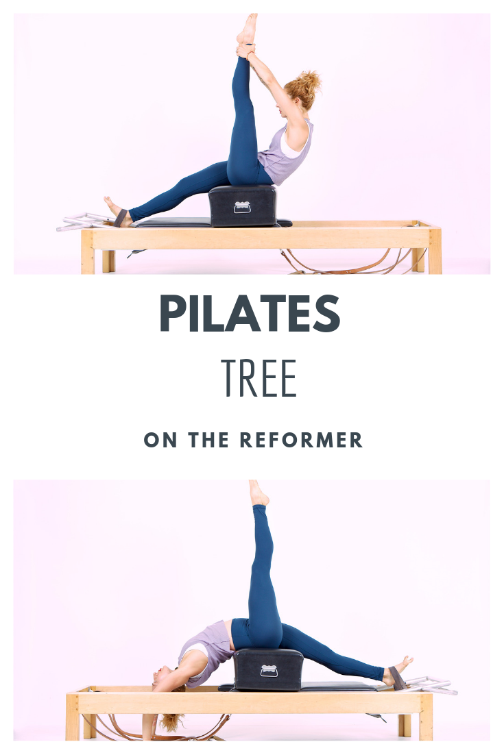Pilates Tree On The Reformer Pilates Reformer Exercises Pilates Reformer Free Pilates Workout