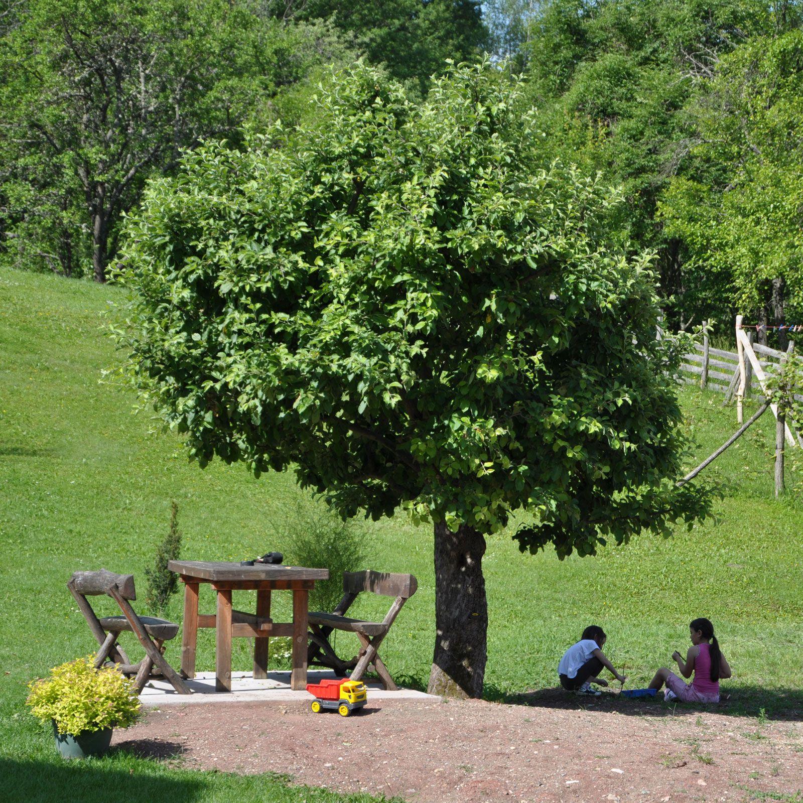 selo mionica kod kosjeria domainstvo milogoe village mionica near kosjeric serbia village