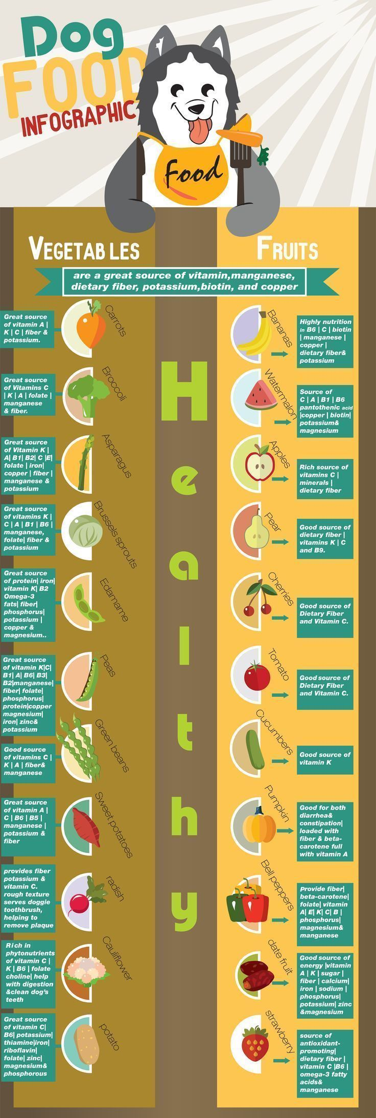 Dog food Infographic, Most people don't know but dogs are