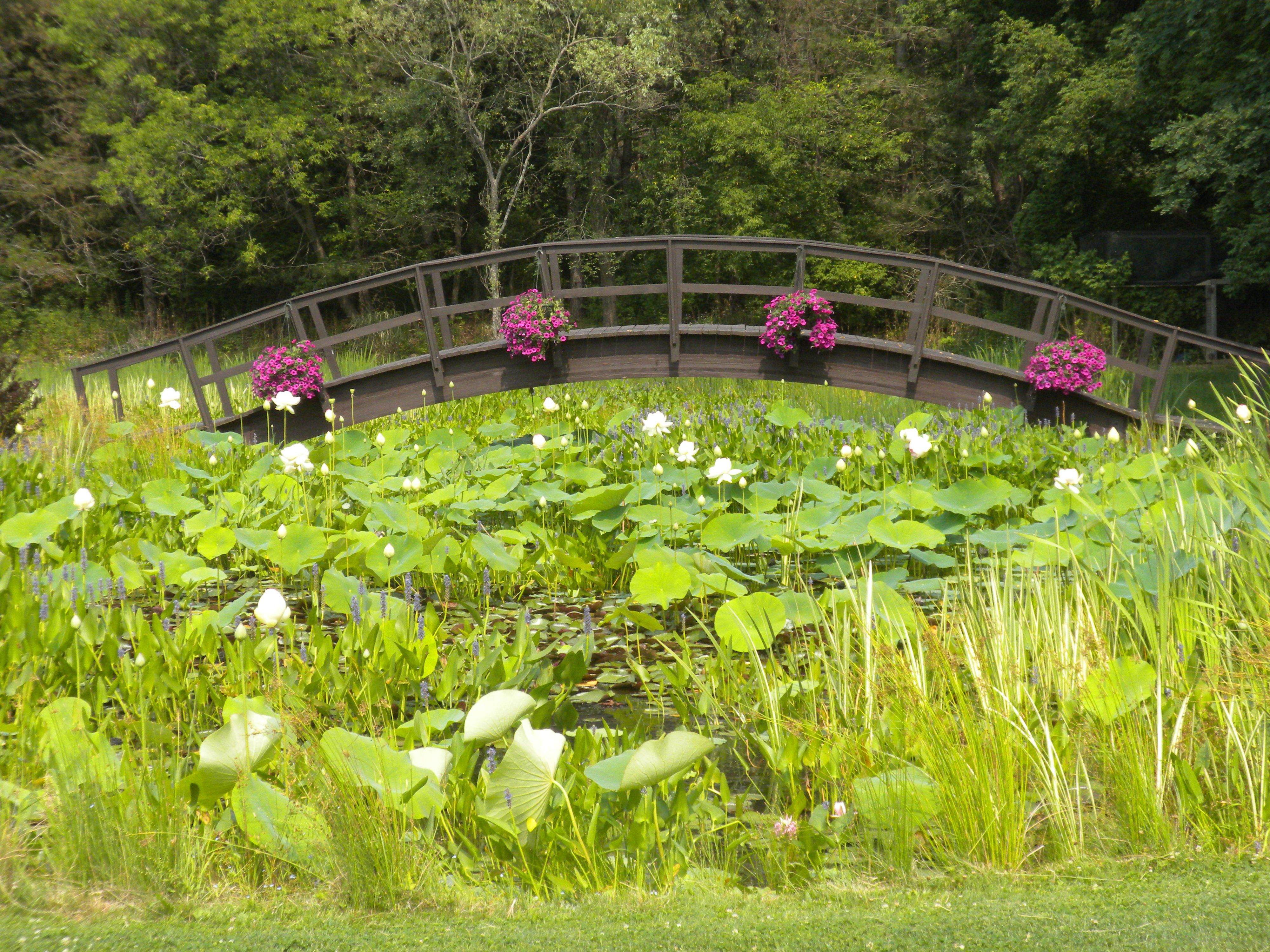 Beautiful Tioga Gardens...if Iu0027m Still Living Anywhere Near Owego By The