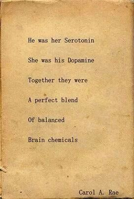 He was her serotonin she was his dopamine together they were a perfect blend of balanced brain chemicals