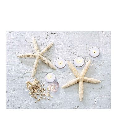 Another great find on #zulily! Starfish & Seashell Light-Up Canvas #zulilyfinds