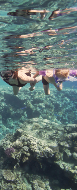Get a little snorkel action in while visiting #CostaRica.