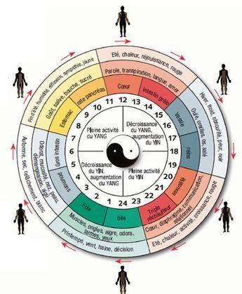 Definition Principe Effets Des Champs Magnetiques Pulses Horloge Biologique Medecine Chinoise Guerison Energetique