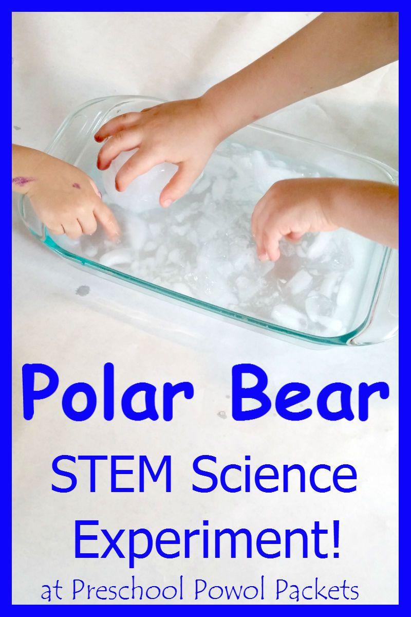 Polar Bear Science Experiment STEM | Preschool Powol Packets Blog ...