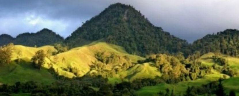 Parques Naturales, ciudades coloniales y el Caribe - Salidas de JUL a OCT » Tuawo