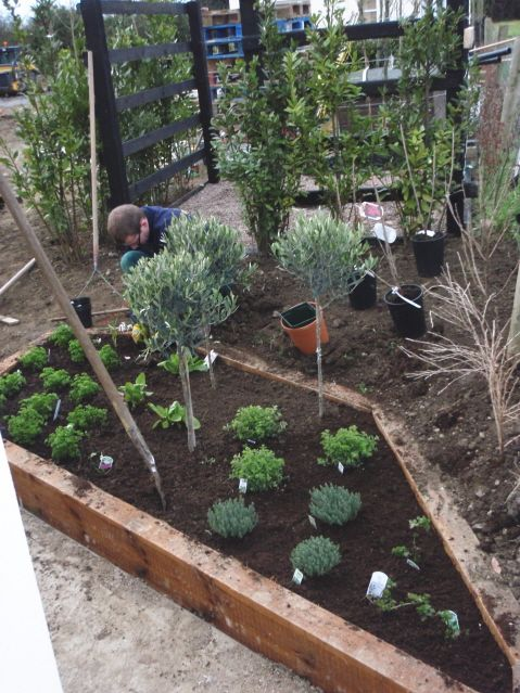 Ideas For Herb Garden