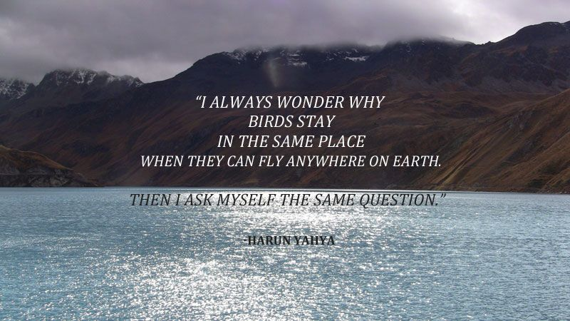Val D Anniviers Switzerland Travel Quotes Wonder This Or That Questions