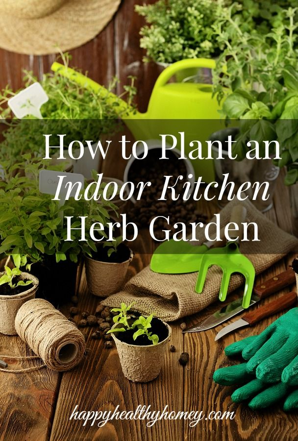 Planting an indoor kitchen herb garden is easy with these tips and ideas.